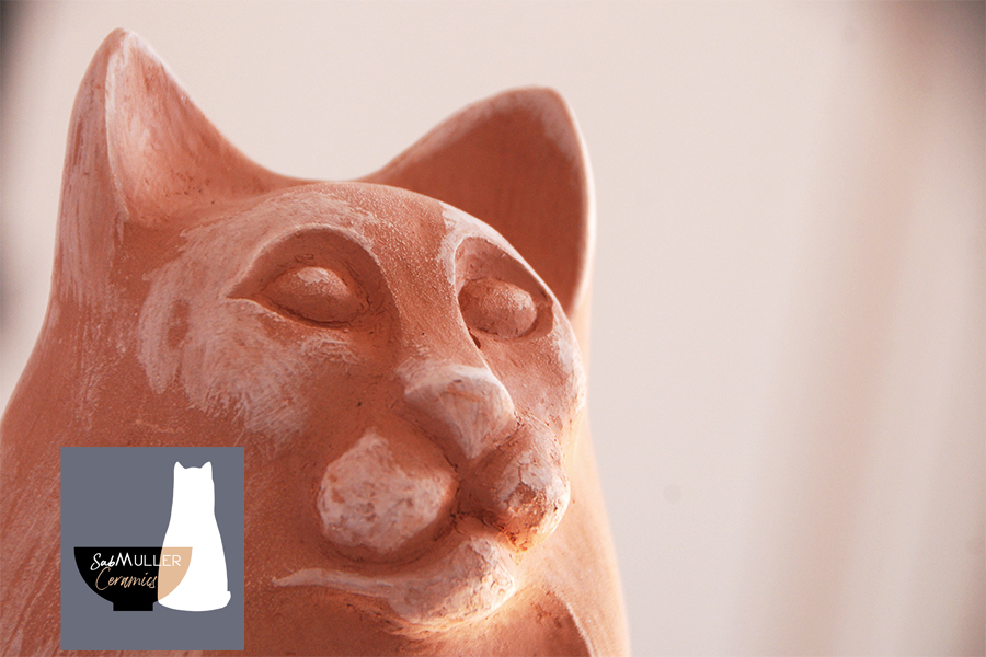 7-Chat Motte-3 -dégourdi